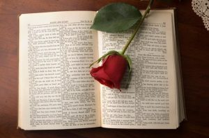 Los libros de drama te ocasionarán una sensación distinta