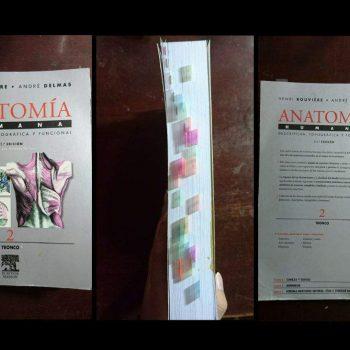Los libros de anatomía que nadie se puede perder están aquí.