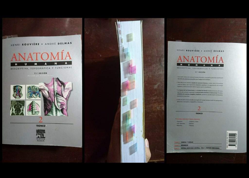Mejores Libros de Anatomía