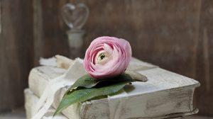 mejores libros romanticos