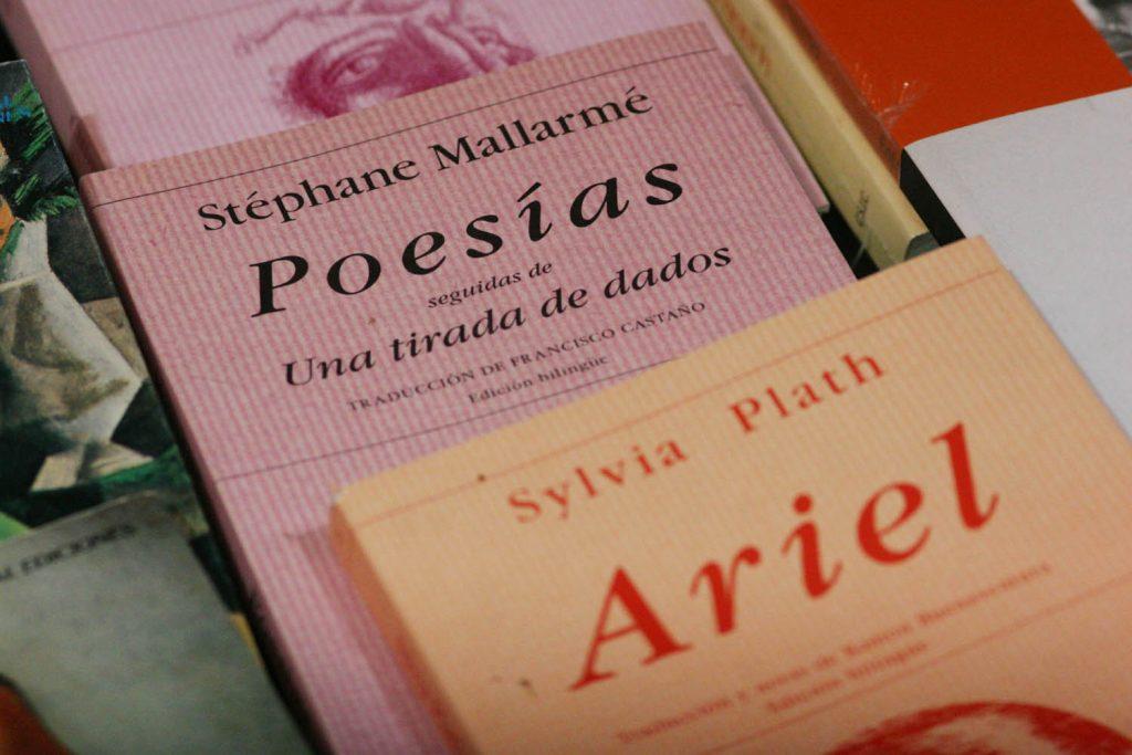 Estas otras novelas te demostrarán como es la poesía en todo su esplendor.